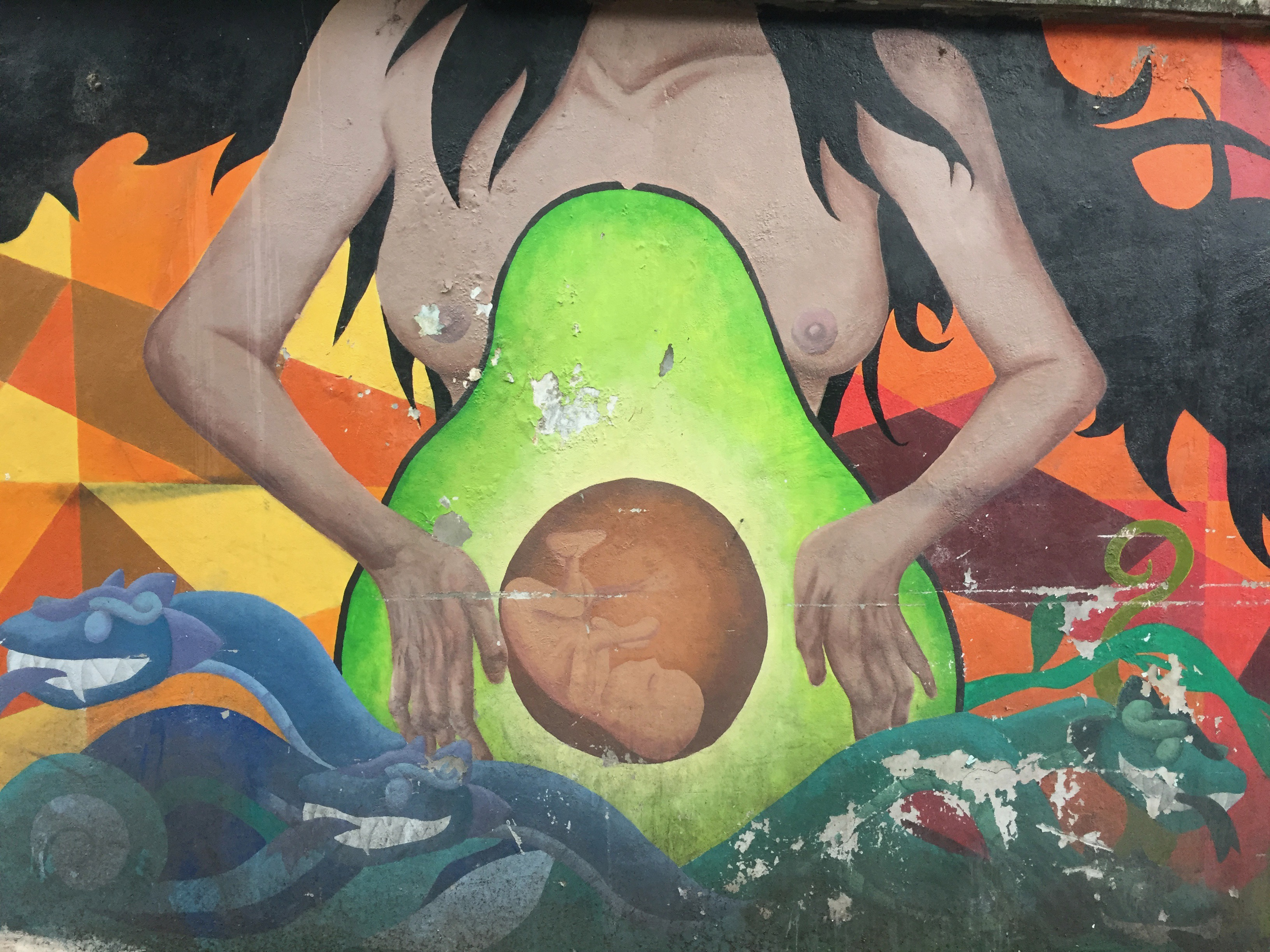 street art of pregnant woman with avocado